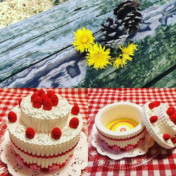 /home/sacripanuv/modeles hama.com/wp content/uploads/2016/10/161010 fraisier 3d boite perles a repasser hama